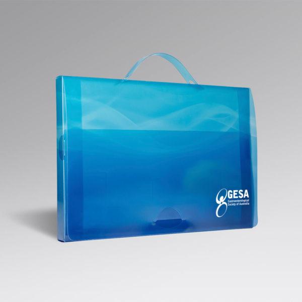 gesa-Document-Case