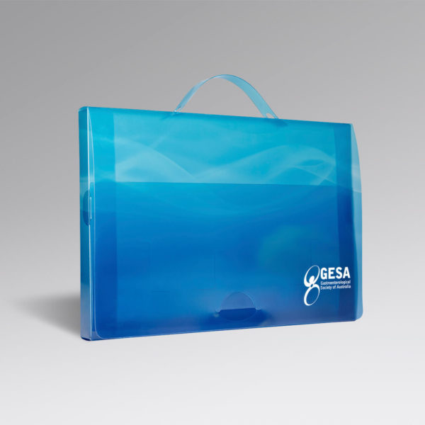 gesa-Document-Case